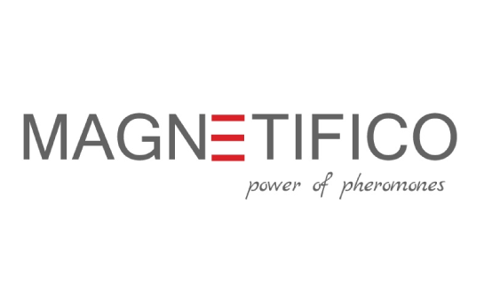 Magnetifico logo