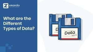 Vilka är de olika typerna av data för företag?