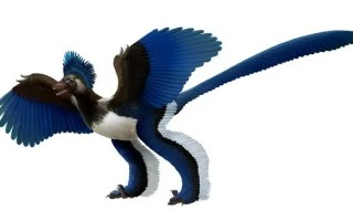 Artist's impression of the birdlike dinosaur known as Xiaotingia zhengi. (c) Xing Lida and Liu Yi