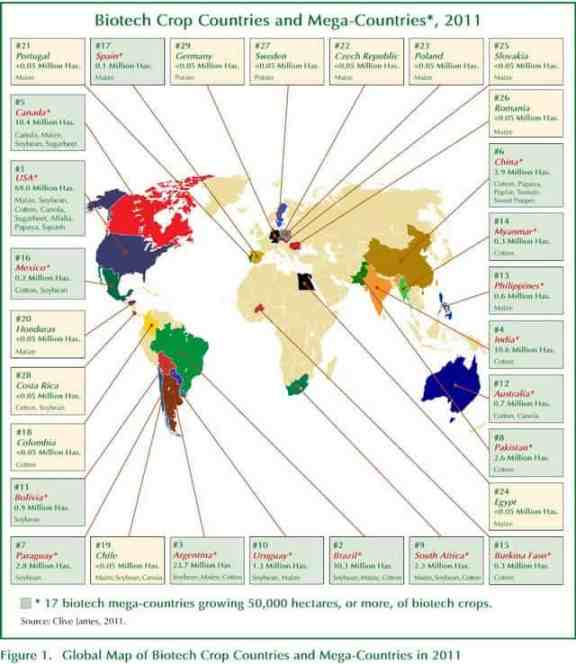 Biotech Crops Farming Countries 2011