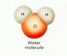 molecue