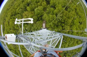 Fisheye view from a data collection forest tower. (c) Harvard University