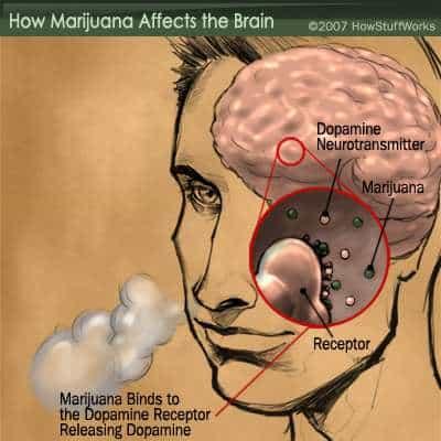 marijuana_Addiction
