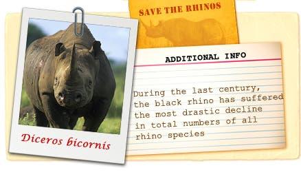 black rhiono2