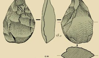 Typical oldowan stone tool. Image: Wikimedia Commons