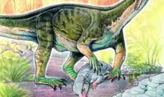 early dinosaur relative