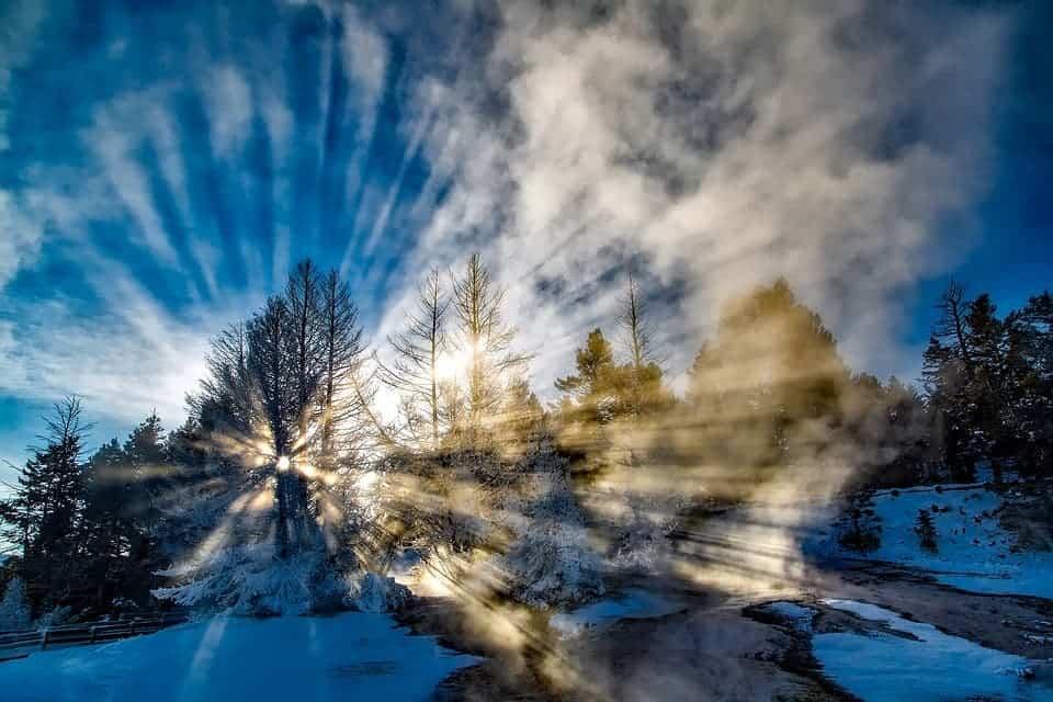 Yellowstone winter.