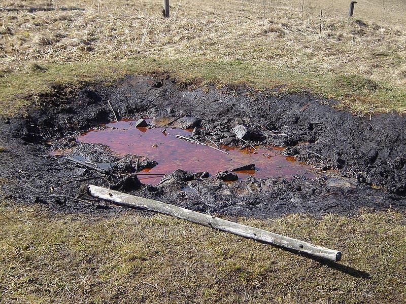 Surface oil seep Slovakia.