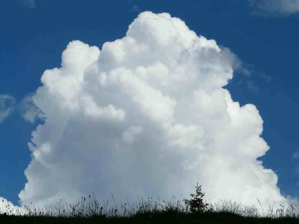 Cumulus clouds are characterized by a white, fluffy appearance. Credit: Pixabay, Hans.