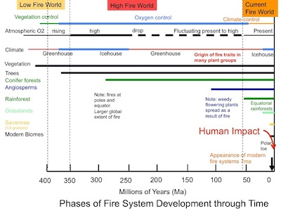 Understanding the History of Fire Can Help Us Fight Today's Biggest Blazes | Zocalo Public Square • Arizona State University • Smithsonian