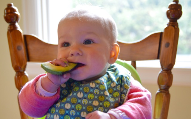 Baby-Led Weaning with avocado for workshop