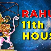 Rahu in 11th house-effect on Career, Marriage, Finance for all ascendant