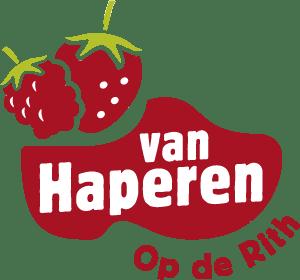 aardbeien en zomerfruit
