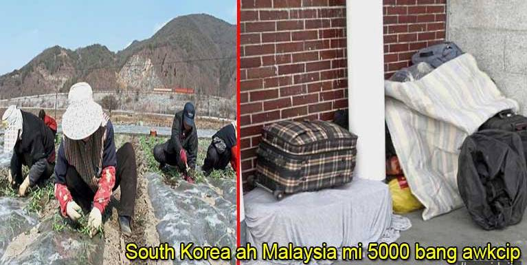 South Korea gamsung ah Malaysia gammi illegal in 5000 bang om