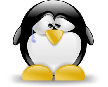 Casi todas las distros de Linux en riesgo por bug en glibc