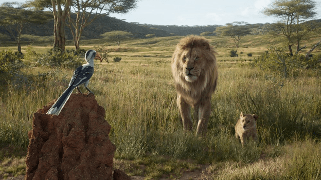 The Lion King from Disney