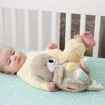Fisher-Price Ma Loutre Calins Bonne Nuit peluche bébé appaisante avec battements de cœur, bruits de respiration et lumière, dès la naissance, FXC66