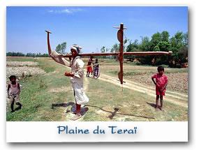 Plaine du Teraï