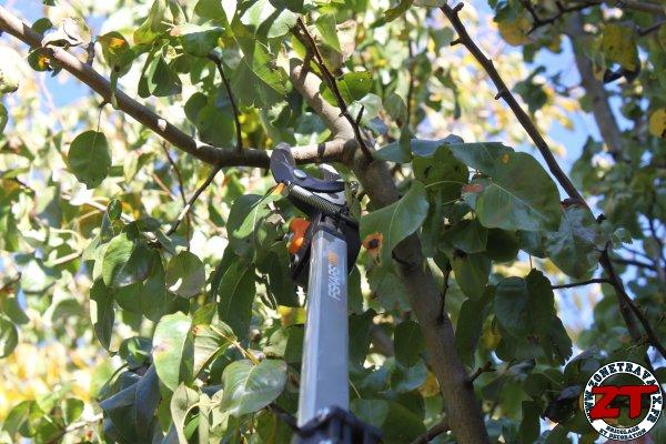 Test fiskars coupe branches t lescopique smartfit l86 - Coupe branche telescopique fiskars ...