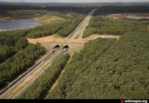 Ecoduct Kikbeek