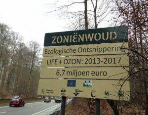 Werfbord OZON