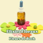 Logo du groupe Fleurs de Bach et élixirs floraux