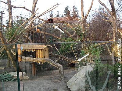 Anlage Kleine Pandas