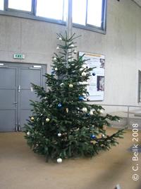 Weihnachtlich geschmückter Baum im Elefantenpark