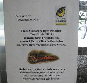 Traurige Nachricht im Großkatzenhaus ...