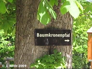 Der Pfad beginnt rechts vom Tirolerhof ...
