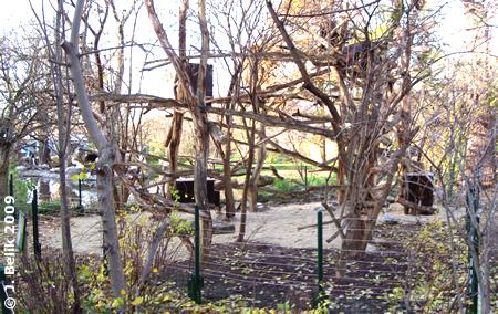 Die neue Baumstachler-Anlage, 19. November 2009
