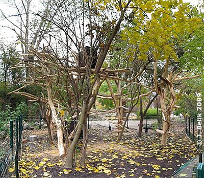 Neue Urson Anlage, 30. Oktober 2009