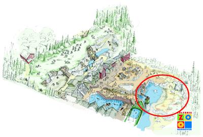 Yukon Bay, die Eisbären-Anlage siehe Markierung (Übersichtsplan: Erlebnis-Zoo Hannover)