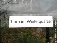 Tiere sind im Winterquartier! Wäre nett, wenn man das vorher wüßte, damit man nicht umsonst den Weg rauf zu den Terrarien geht. 18. November 2010