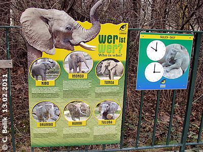 Die neue Info-Tafel bei den Elis, 13. Februar 2011