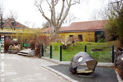 Blick auf die Außenanlage der Riesenschildkröten, 18. Februar 2011