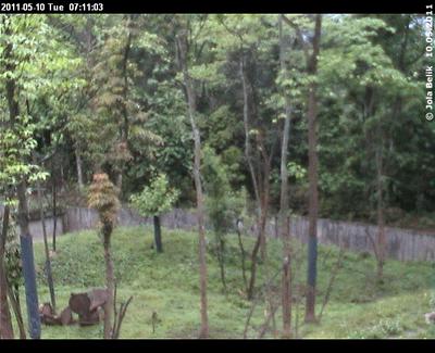Blick in Fu Longs Garten, 10. Mai 2011