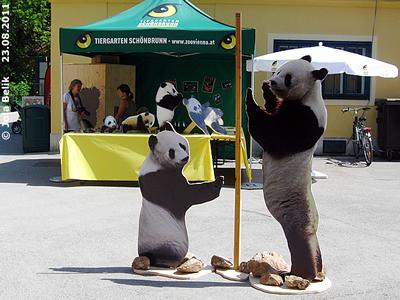 Infostand vor dem Pandahaus, 23. August 2011