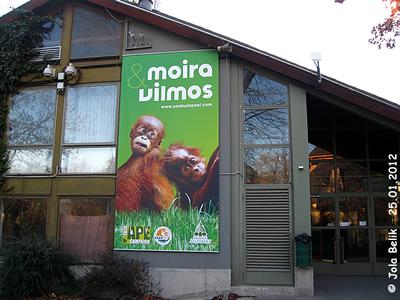 Eingang Menschenaffen-Haus, Zoo Budapest, 25. Jänner 2012