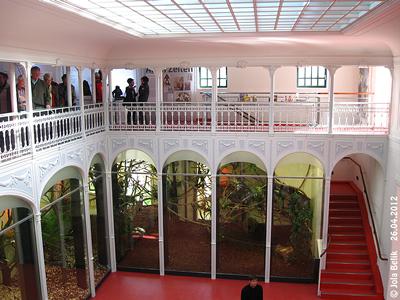 """Blick auf den BeEreich der """"Mini-Äffchen"""" und Stiegenaufgang zur Galerie, Affenhaus, 26. April 2012"""
