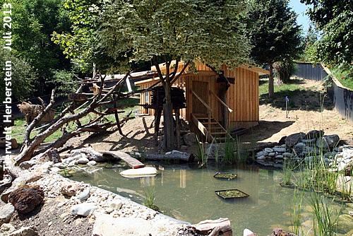 Teich Pandaanlage
