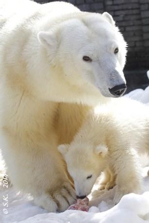 Baby Nora mit Mama 2014
