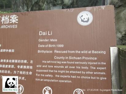 Dai Li