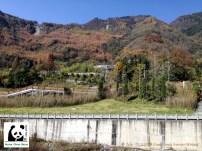Blick auf Panda-Base vom Besucherzentrum aus