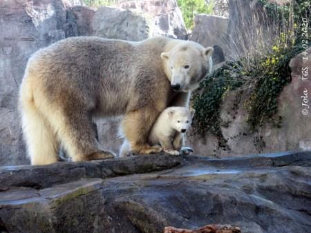 Nora & Baby Finja