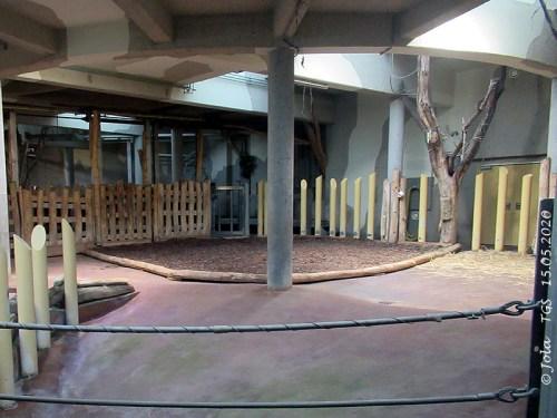 Neuer Bodenbelag im Nashorn-Haus