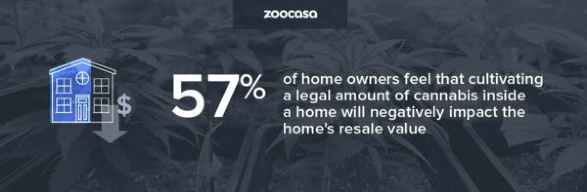 zoocasa-cannabis-cultivating-home-negative-value