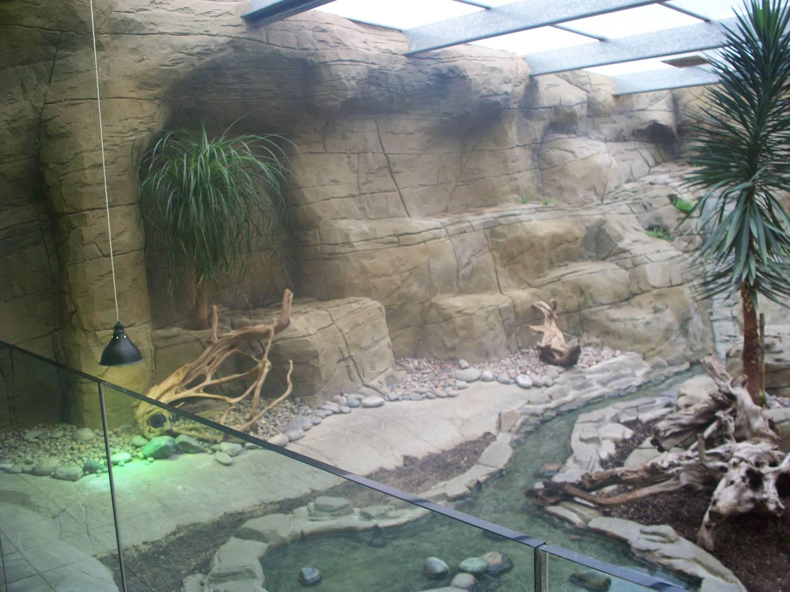 Rhino Iguana Enclosure Looking Left 29th Nov 13 ZooChat