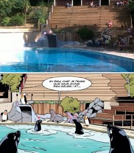 Zoo de pont scorff 04