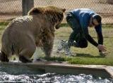 Animale de companie - 5 animale de evitat